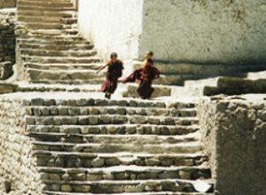 'Introductie in het Tibetaans Boeddhisme' start 29 maart.