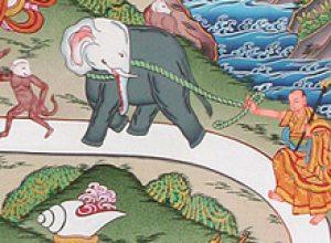 Geen Shamatha meditatie op 3 oktober