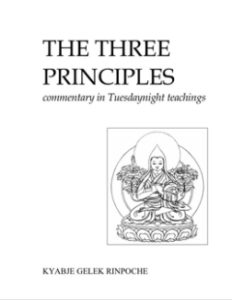 Foto van voorkant kaft The Three Principles