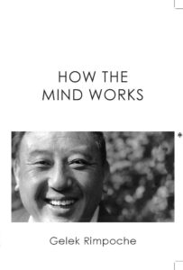 Foto Voorkant boek How the Mind Works