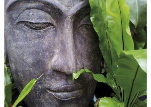 Verstild Boeddha hoofd