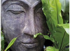 Meditatiedag zondag 7 april