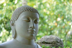 Foto hoofd van een boedha in meditatie